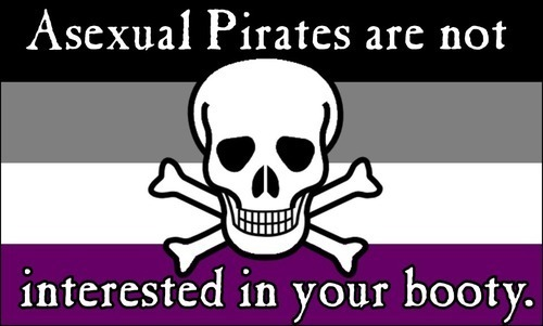 "Asexual Awareness Flag with ""Asexual Pirates are not interested in your booty"""