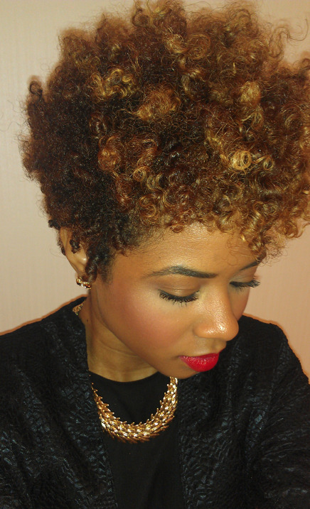 Two Strand Twist Out Using New Products McKenzie Renae