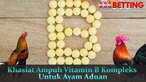 Khasiat-Ampuh-Vitamin-B-Kompleks-Untuk-Ayam-Aduan