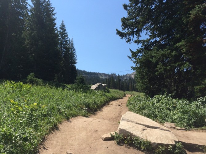 Why I Moved to Utah - The Path Up