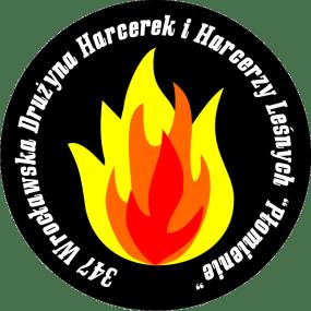 logo-347-wdhihl-plomienie-7-cm-bez-tla