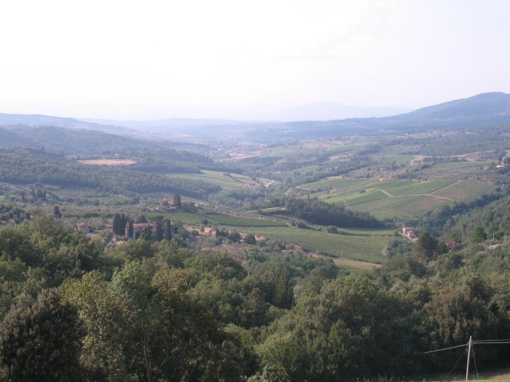Overlooking an expanse of vineyards