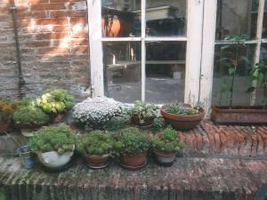 TRAVEL   Secret Gardens in Ferrara