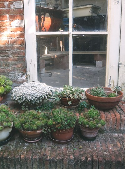 TRAVEL | Secret Gardens in Ferrara