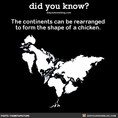 The continents can be rearranged to form the shape of a chicken. Source