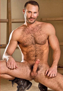 gay hairy muscle bear daddy