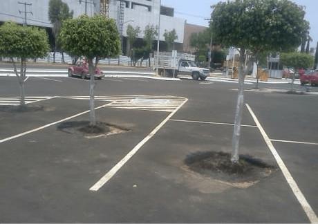 No parking zone.