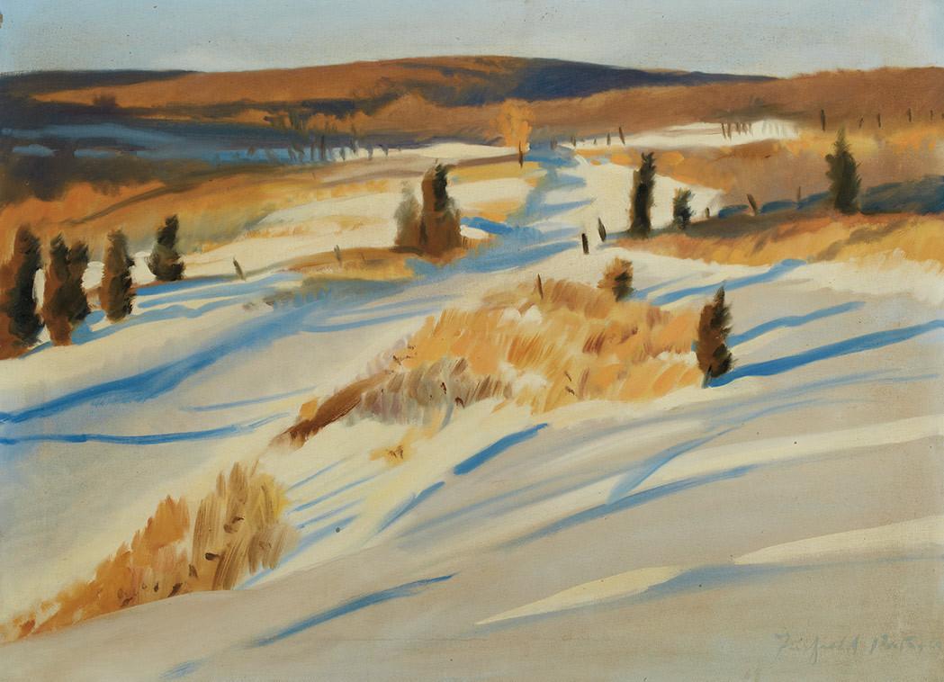 lawrenceleemagnuson:Fairfield Porter (USA 1907-1975)Early Snow (1969)oil on canvas (55.6 x 76.2cm