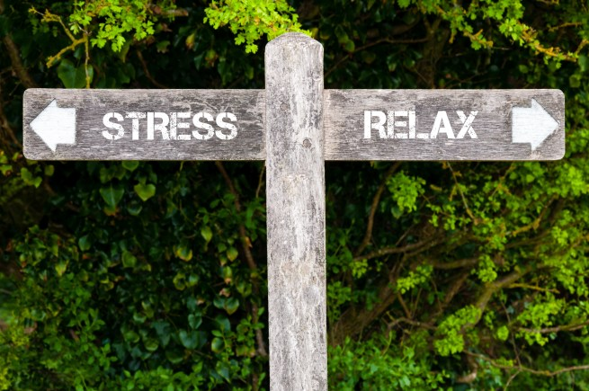 Feeling-Stressed-?-Get-Relaxed-With-Help-From-PRO-Bellevue-Washington