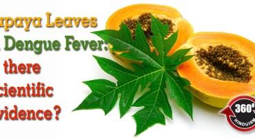 Papaya Leaves in Dengue Fever
