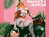 Download Katy Perry Harleys In Hawaii mp3 Download