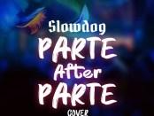 Download Slowdog Parte After Parte Cover mp3 download
