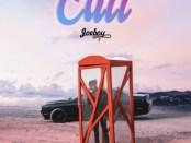 Download Joeboy Call Mp3 Download