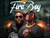 Download DJ Baddo Best Of Fireboy Mix Mp3 Download