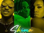 Download Idahams Shima Remix Ft Peruzzi Seyi Shay Mp3 Download