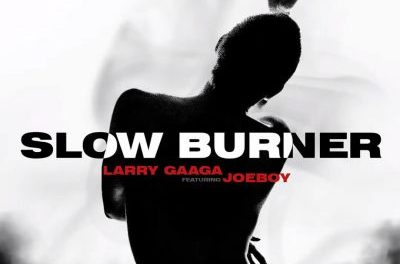 Download Larry Gaaga ft Joeboy Slow Burner MP3 Download