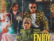 Download Tekno Ft Mafikizolo Enjoy Remix MP3 Download