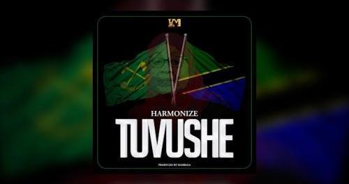 Download Harmonize Tuvushe MP3 Download