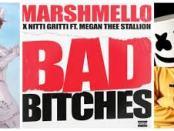 Download Marshmello & Nitti Gritti Bad Bitches Ft Megan Thee Stallion MP3 Download