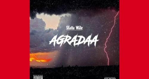 Download Shatta Wale Agradaa MP3 Download