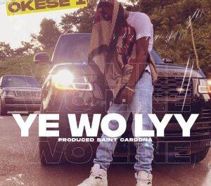 Download Okese1 Ye Wo Lyy MP3 Download