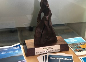 drowning prevention auckland award for e-learning platform