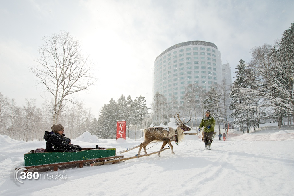 Niseko-village-reindeer-sledding-3