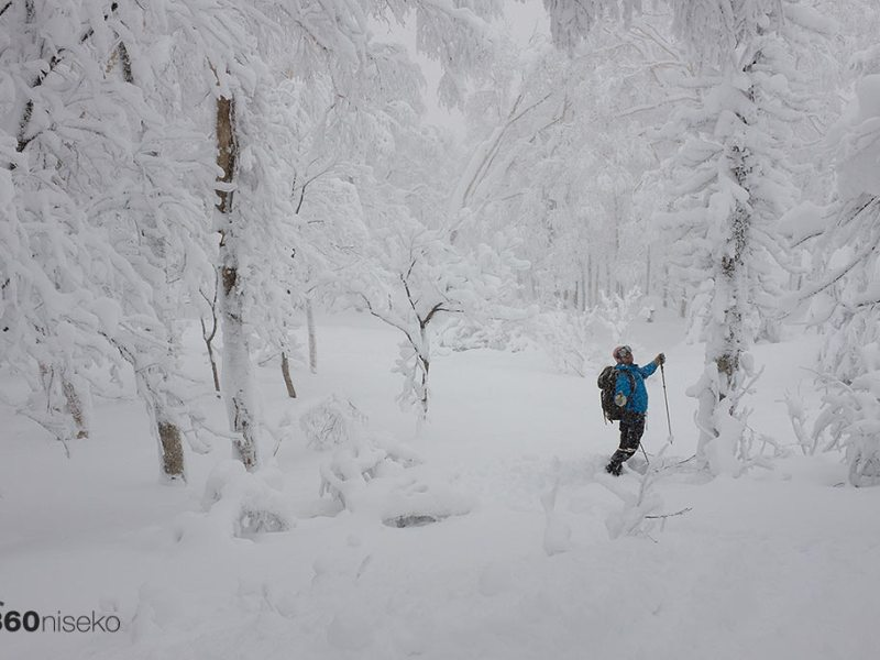 A snowy forest - Mt.Yotei, 11 January 2015