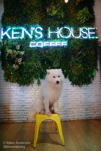 Kens House - Dog Cafe, Ho Chi Minh City