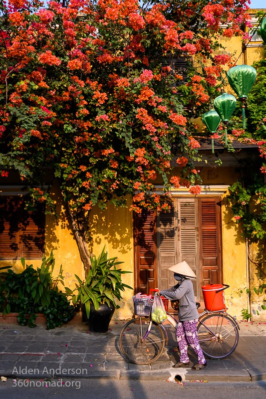 Colors of Hoi An bougainvillea