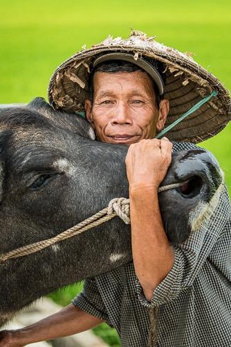 Sau Planting Rice, Hoi An, Vietnam
