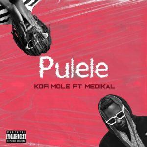 Kofi Mole Ft. Medikal – Pulele, MUSIC: Kofi Mole  Ft. Medikal – Pulele, 360okay