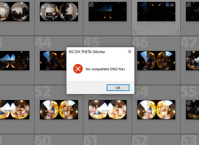 Theta Stitcher error - no compatible DNG files