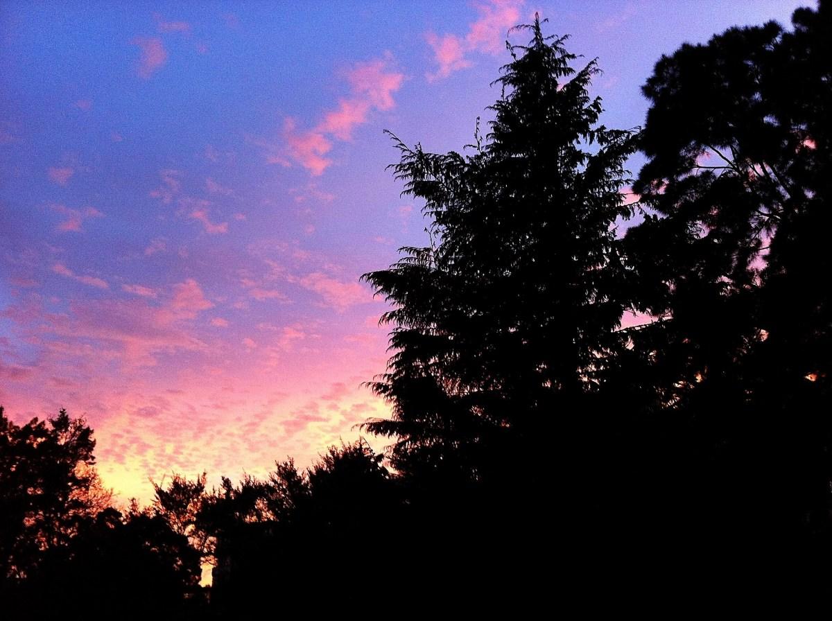 011: Sunset