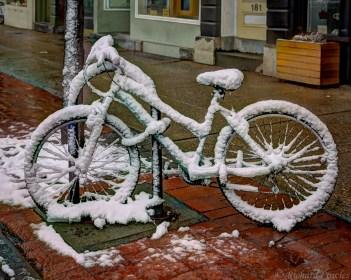 Bike sicle