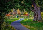 Smith College Botanical Gardens