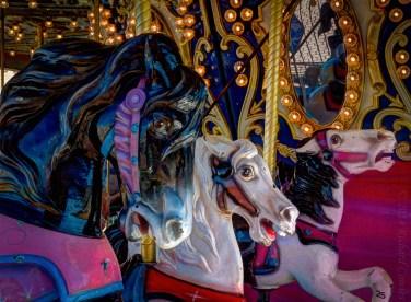 horses1.5