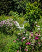 """""""If you have a garden and a library, you have everything you need."""" - Marcus Tullius Cicero"""