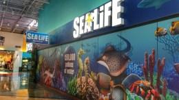 Sea Life Aquarium Concord Charlotte