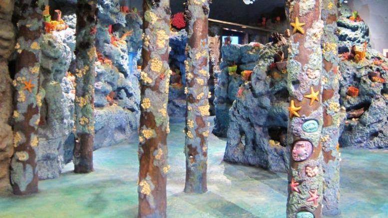 Fernbank Museum NatureQuest