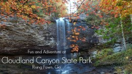 Cloudland Canyon State Park waterfall