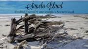 Sapelo Island Ga.