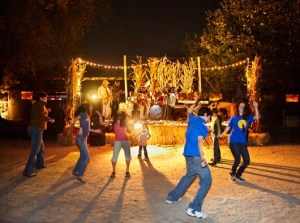 Live Music at Ignite the Night Fall Bonfire Festival