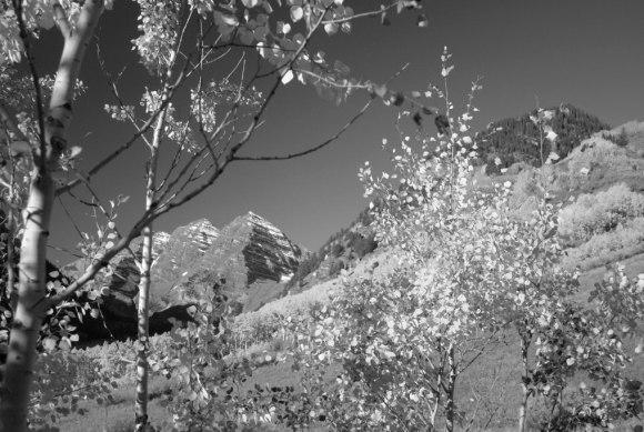 Bob Lee Photographs Nature Near Aspen, Colorado