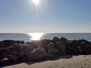 "Third Place - ""Golden Isles Sunrise"" by Bridget Caroll"
