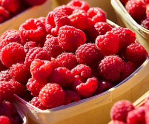 179. Find Fresh Foods at the Barrington Farmers Market