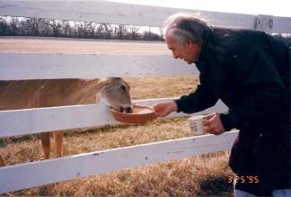 Post - 8 Moate - Breakfast with Deer