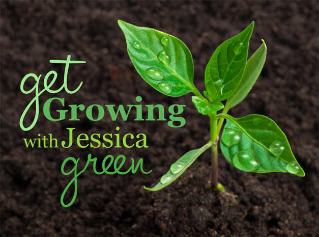 The Gentleman Farmer's  Jessica Green on Gardening, Farming, Food and Family