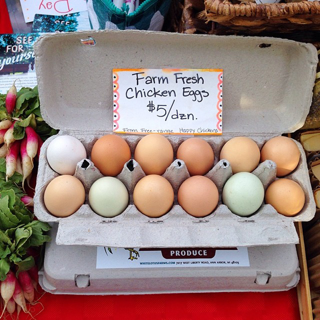 Post - Farm Fresh Eggs - Sally Roeckell - 2