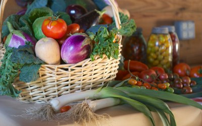 260. Get Growing: Local Farmers Share the Harvest to Celebrate Community